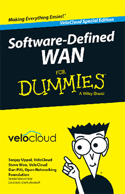 SD-Wan for Dummies Book cover